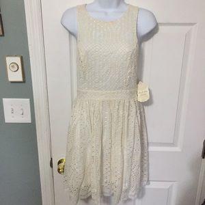 NWT altard State cream lace dress